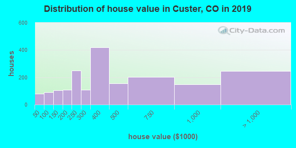 Custer County home values distribution