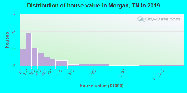 Morgan County home values distribution