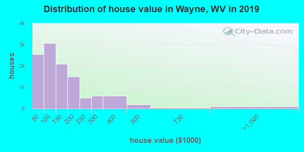 Wayne County home values distribution
