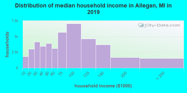 Allegan County household income distribution in 2009
