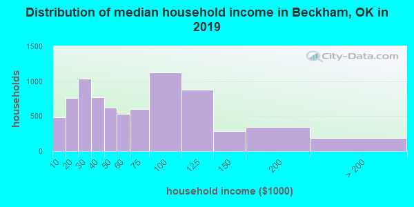 Beckham County household income distribution in 2009
