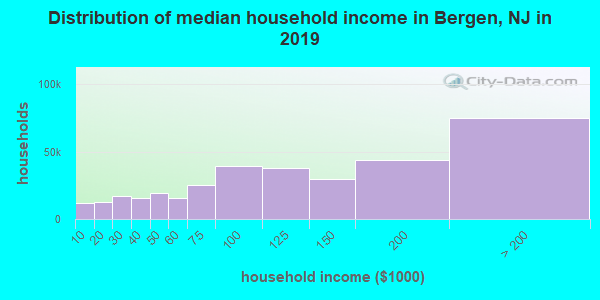Bergen County household income distribution in 2009