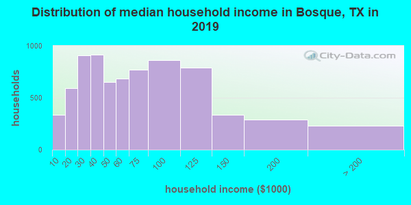 Bosque County household income distribution in 2009