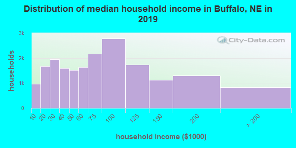 Buffalo County household income distribution in 2009
