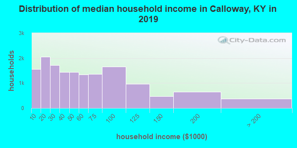 Calloway County household income distribution in 2009