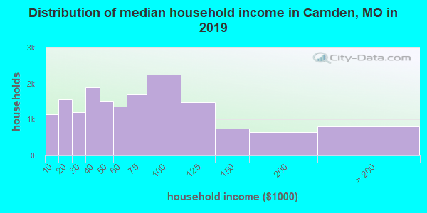 Camden County household income distribution in 2009