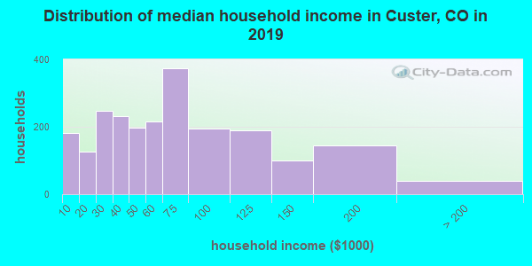 Custer County household income distribution in 2009