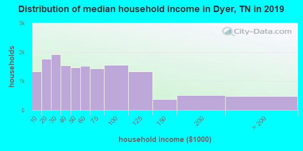 Dyer County household income distribution in 2009