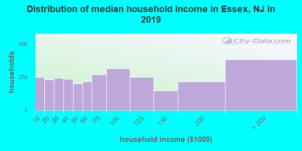 Essex County household income distribution in 2009