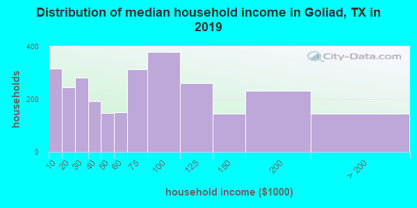 Goliad County household income distribution in 2009