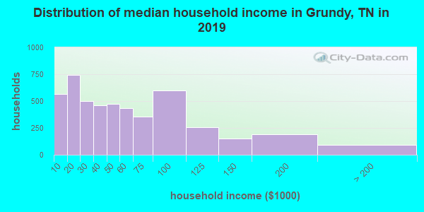 Grundy County household income distribution in 2009