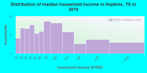 Hopkins County household income distribution in 2009