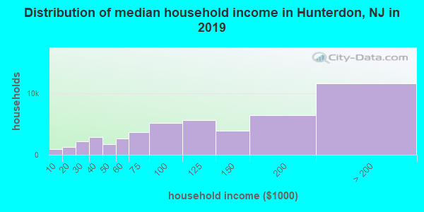 Hunterdon County household income distribution in 2009