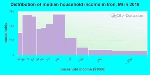 Iron County household income distribution in 2009