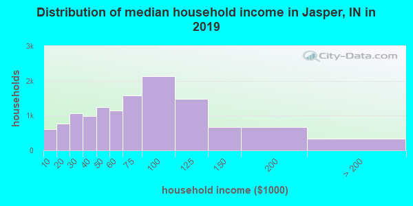 Jasper County household income distribution in 2009