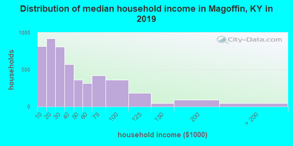 Magoffin County household income distribution in 2009