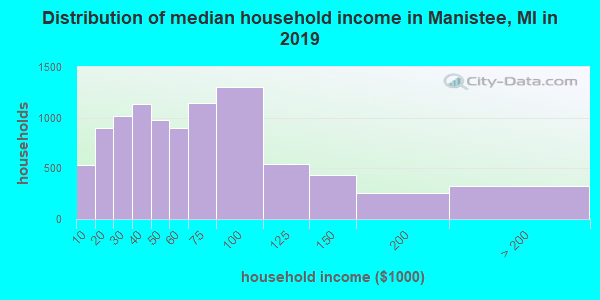 Manistee County household income distribution in 2009