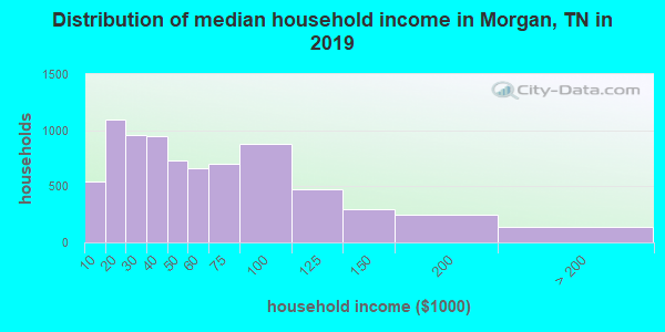 Morgan County household income distribution in 2009