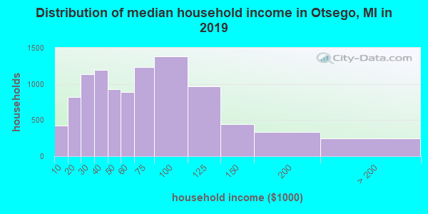 Otsego County household income distribution in 2009