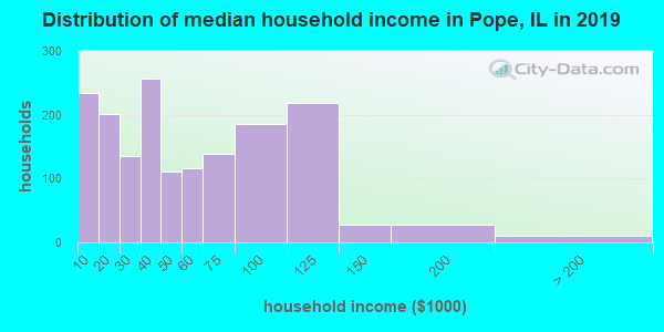 Pope County household income distribution in 2009