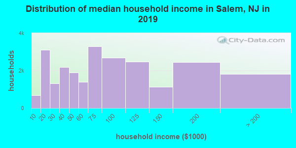 Salem County household income distribution in 2009