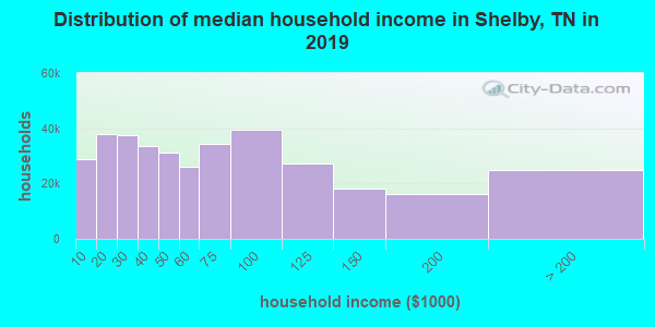 Shelby County household income distribution in 2009