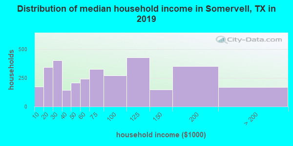 Somervell County household income distribution in 2009