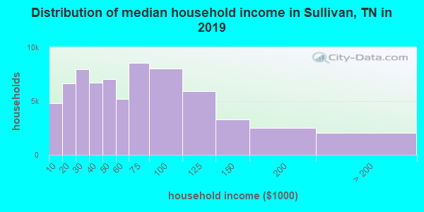 Sullivan County household income distribution in 2009