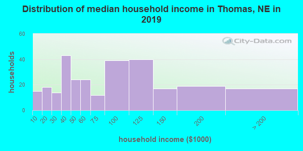 Thomas County household income distribution in 2009