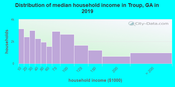 Troup County household income distribution in 2009