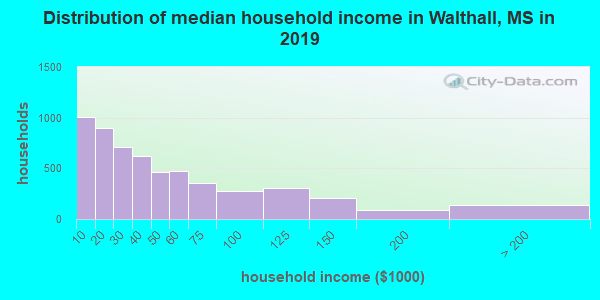 Walthall County household income distribution in 2009