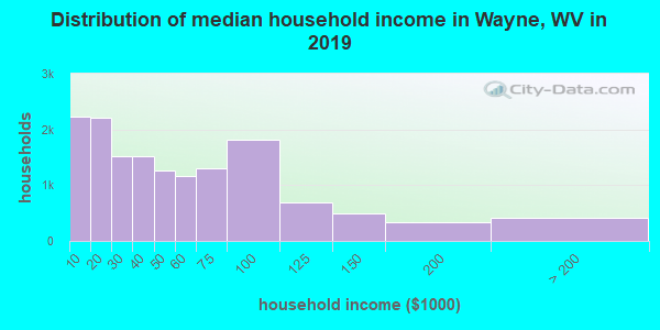 Wayne County household income distribution in 2009