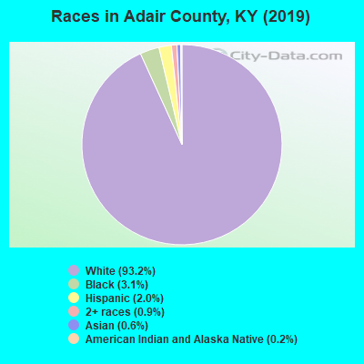 Adair County races chart