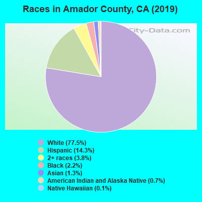 Amador County races chart
