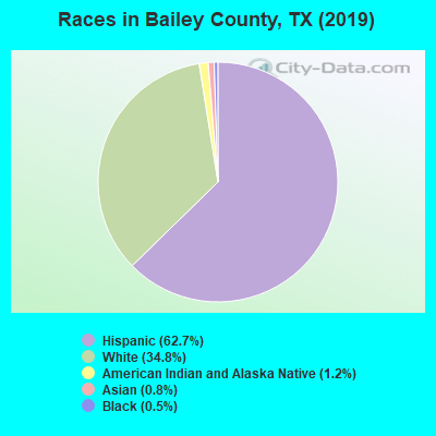 Bailey County races chart