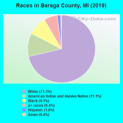 Baraga County races chart