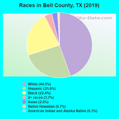 Bell County races chart