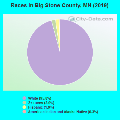 Big Stone County races chart