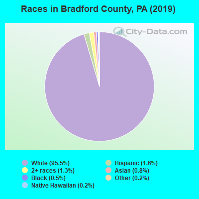 Races in Bradford County, PA (2017)