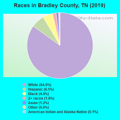 Bradley County races chart