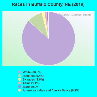 Buffalo County races chart