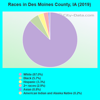 Races in Des Moines County, IA (2017)