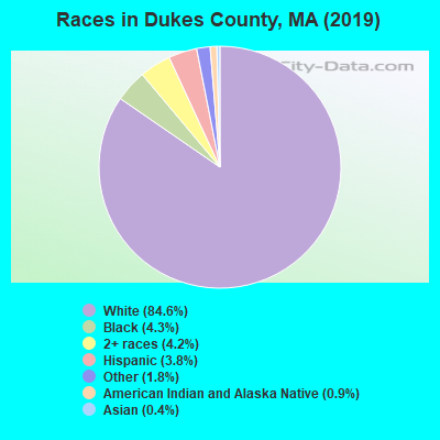 Dukes County races chart