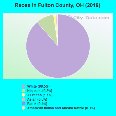 Races in Fulton County, OH (2017)