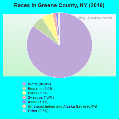 Races in Greene County, NY (2017)