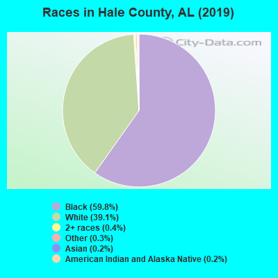 Hale County races chart