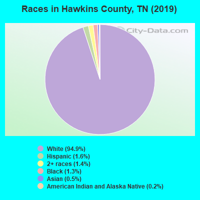 Hawkins County races chart