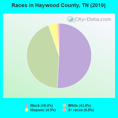 Haywood County races chart