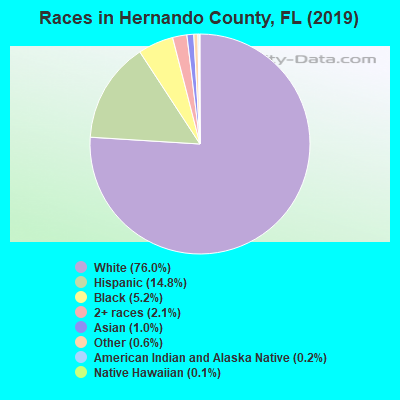 Hernando County races chart