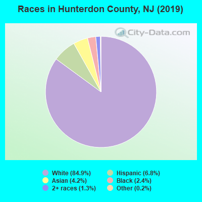 Hunterdon County races chart